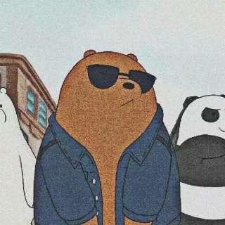 胖达熊的gravatar头像